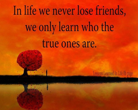 Hard Times Will Always Reveal True Friends Images  amp  Pictures - Becuo